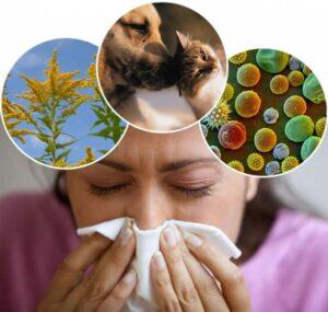 Что нужно знать про аллергию